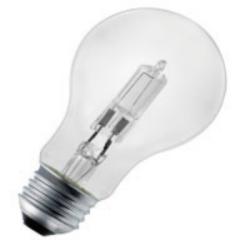A19 Halogen Bulb